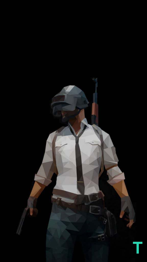 19. Vector Low Poly