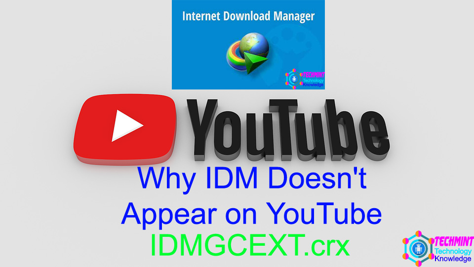 Why IDM Doesn't Appear on YouTube
