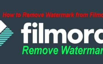 How to Remove Watermark from Filmora
